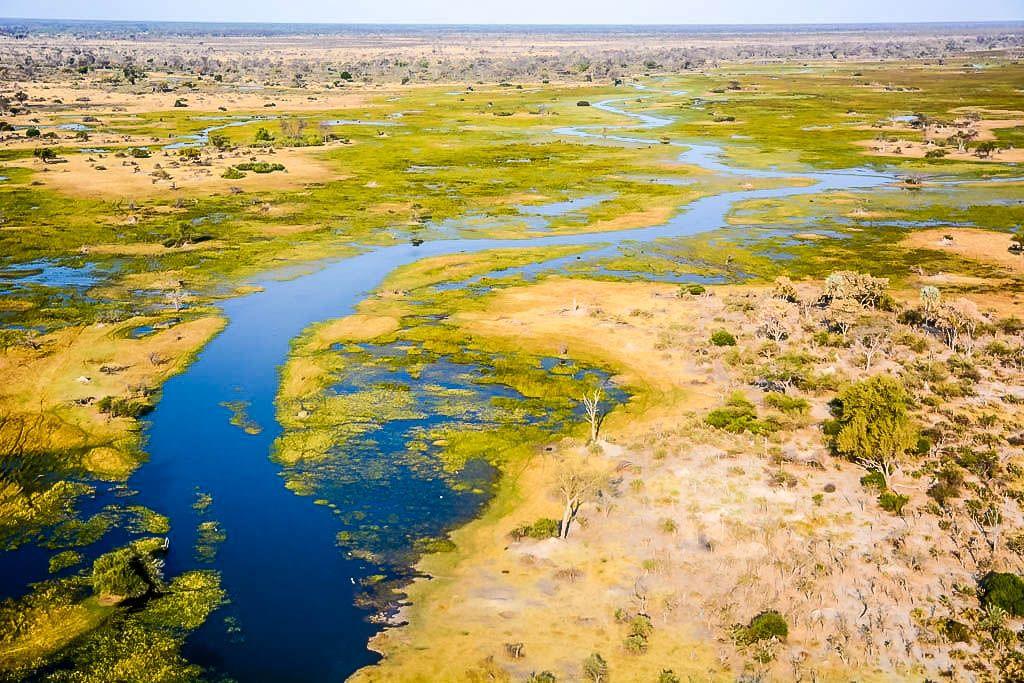 agencia especializada, avioneta, botswana, Delta, Maun, Okavango, viaje con amigos, vuelo