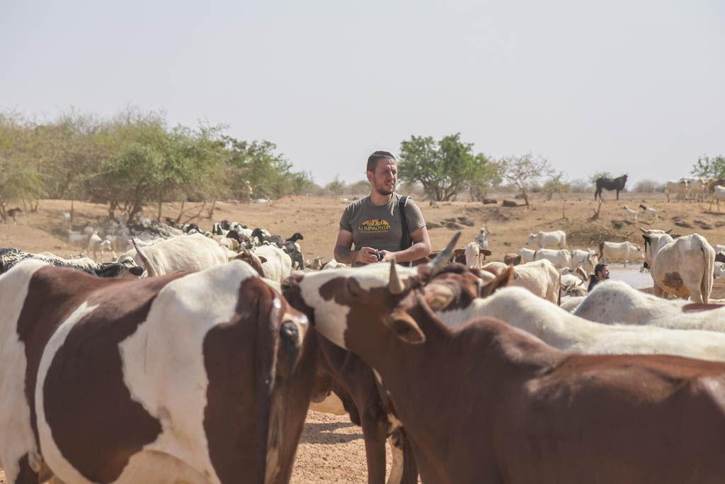 agencia especializada, Chad, Guera, Mangalméuera, Mongo, viaje en camión, viaje solo
