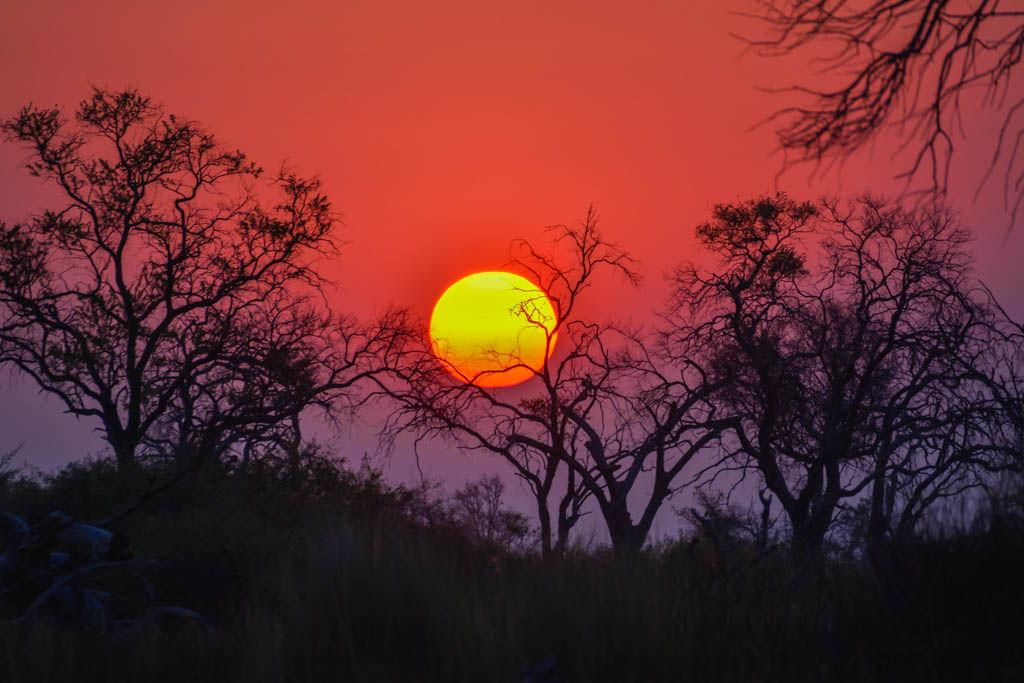botswana, Charla, Conferencia, ponencia